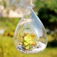 悬挂式玻璃花瓶 微景观苔藓瓶 水培透明花瓶多肉植物花瓶
