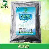乳酸菌发酵饲料微生物饲料发酵剂饲料级乳酸菌种微生物饲料添加剂