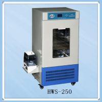 恒温培养箱,HWS-1000,厂家直销