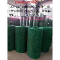 优质荷兰网 浸塑电焊网120-300丝