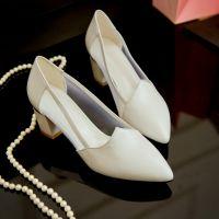 2015年春秋新款小尖头中跟粗跟羊皮网纱单鞋透气舒适韩版潮女鞋