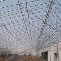 厂家定制新款优质热镀锌文洛型农业温室养殖大棚 葡萄大棚