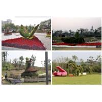 植物绿雕、立体花坛、植物墙、绢花造型、菊花造型