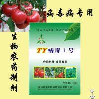 小番茄圣女果病毒病特效药 奥立克番茄TY病毒专用 粉剂
