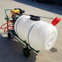 农作物打药机 手推式四轮喷药机 背负式喷雾器