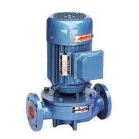 专业生产济水牌立式热水管道泵泰安管道泵领先品牌