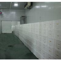 供应大型猕猴桃冷库 安徽肯德制冷设计安装建造