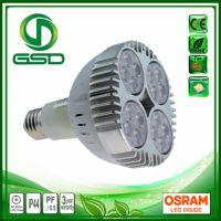 格士得科技GS-PAR30-40W-16OS LED E27射灯