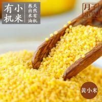 端午节朝阳东北特产有机小米优质杂粮健康绿色批发零售价格优惠