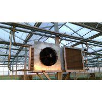 久顺生产批发花卉温室大棚加温专用暖风机 水暖风机批发