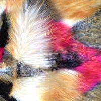 【2015新款】四色提花 彩色大狐狸毛 仿皮草 长毛绒 人造毛皮布料