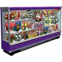 上海鲜花展示柜花店专用鲜花保鲜柜鲜花柜定做