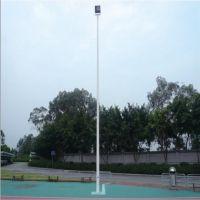 篮球场灯光,羽毛球场灯光 室内球场灯光 锥形一拖一球场灯杆