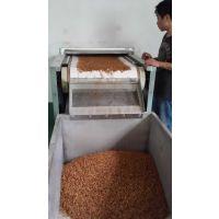 新型黄粉虫微波干燥熟化设备