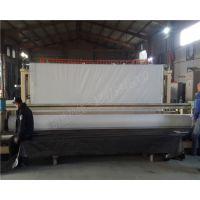 300克热复合式复合防渗膜 华龙HDPE双层复合土工布厂家
