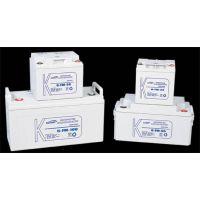 科士达蓄电池12V65AH铅酸免维护蓄电池12V65AH