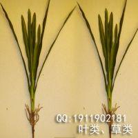 新款 厂家直销仿真大东亚兰叶 仿真叶子 植物 树材料 花配饰