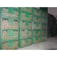 鸡蛋保鲜冷库工程案例、大型蛋类冷库安装设计建造