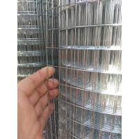 庆中厂家专业护墙防裂镀锌排焊网规格批发