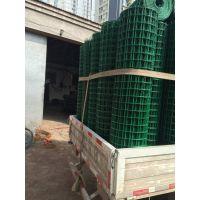 常年出售现货荷兰网 绿色养殖鸡网 散养圈鸡铁丝网 箭腾防锈电焊网