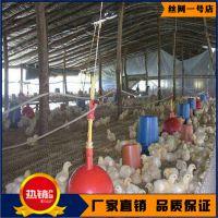 养鸡养鸭脚垫厂家直销价 雏鸡网床专业生产厂家