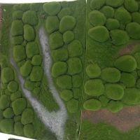 仿真青苔草皮微景观墙面绿草装饰苔藓草坪多肉植物相框盆景插花泥