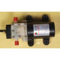 微型水泵 型号:CCB-1206库号:M401895