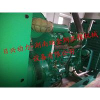 Cummins康明斯各系列发动机/发电机组维修保养/配件供应