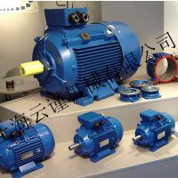 原装进口REMX水泥搅拌机电机三相马达