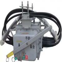 ZW56-12 630-20电动操作