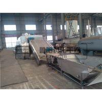 厂家优质供应 脱水蔬菜专用带式干燥机生产厂家鲁阳药化