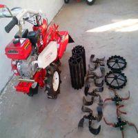 低矮果园旋耕除草机 柴油电启动开沟机 大蒜种植开沟机 圣通