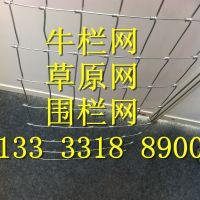 围山镀锌钢丝网 圈牛羊铁丝网 草原网内蒙供应商