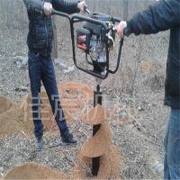 佳宸直供植树挖坑机价格 拖拉机挖坑机