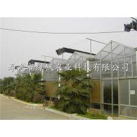 供应12米大跨度连栋温室 PC板文洛式智能连栋 温室生产厂家