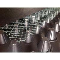 排水板批发销售_绿三江(图)_排水板批发销售价格