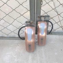 黄江别墅开门机厂家 庭院可视对讲电动门机 遥控围墙电动门电机