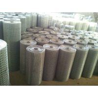 促销.抹墙网.浸塑电焊网.热镀锌电焊网.养殖网电焊网质优价廉
