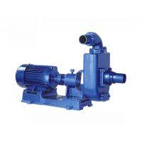 羊城牌 2TC-50 铸铁自吸泵 广州羊城水泵 广州羊城泵业 