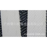 广州擎川everlar厂家直销糖果食品饮料PE耐酸碱耐高温输送带