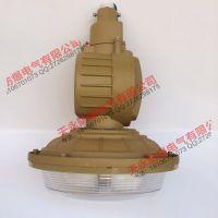哈尔滨工厂灯SBD1101-YQL50C1弯杆式防爆灯