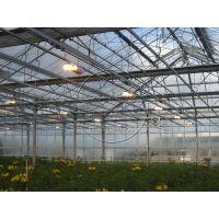 智能连栋玻璃温室内部系统构造——风机水帘、降温、滴灌、照明系统等