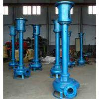 耐磨立式清淤泵 河道淤泥泵 清淤工程队的厂家
