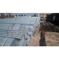 聊城供应:q195大口径厚壁镀锌方管 热镀锌方矩管