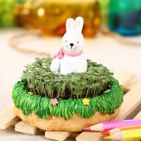 新款 动物家园 卡通树脂摆件草娃娃 迷你办公室桌面盆栽 四款可选