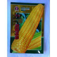 三门峡卢氏县玉米种子包装,防伪包装袋可打码,可来样加工