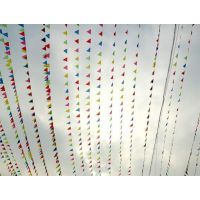弘恒小三角旗尺寸三角旗价格便宜三角旗串旗警示旗庆典婚庆活动会场布置工地小彩旗批发