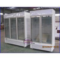 海鲜超市冷冻展示柜 鹤壁立式玻璃门水饺速冻柜 进口生鲜低温冷藏柜