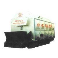 浴室热水锅炉 燃煤热水锅炉 生物质热水锅炉 供暖 燃煤燃颗粒