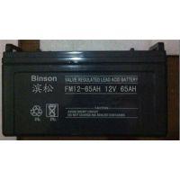 滨松蓄电池铅酸阀控式免维护现货直销